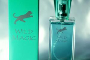 Wild Magic 4